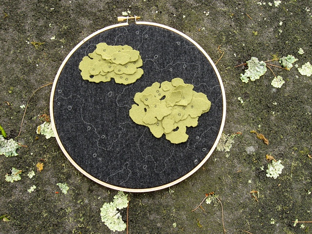 Lichen Wall Art by Chelsea Clarke