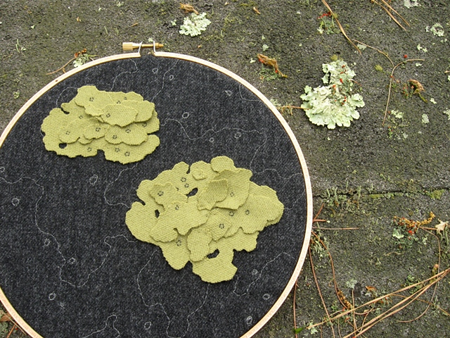 Lichen Embroidery by Chelsea Clarke